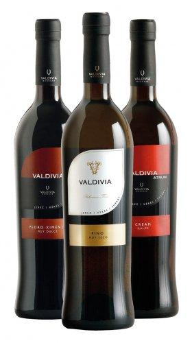 Colección vinos Valdivia
