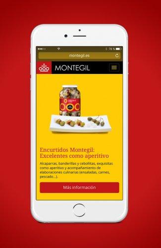 Diseño de web responsive Montegil